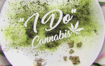 Cooked with Cannabis Review S01E03