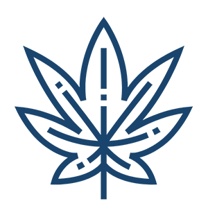 blue outline weed leaf icon